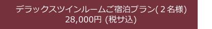 デラックスツインルームご宿泊プラン(2名様)28,000 円( 税サ込)